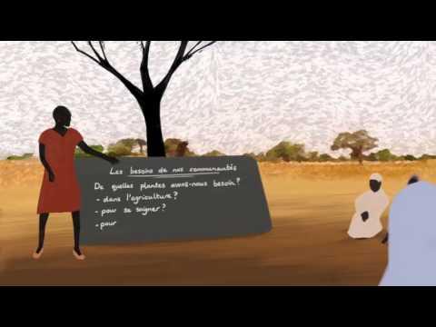 La varice variqueuse le traitement le forum vers