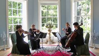 Eleanor Rigby (The Beatles) Wedding String Quartet