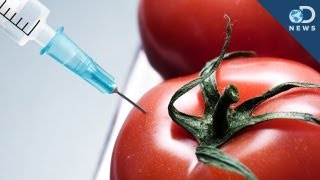 What's the Deal with Genetically Modified Food?
