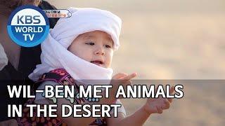 Will-Ben met animals in the desert [The Return of Superman/2020.01.05]