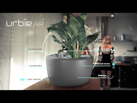 Urbie Air: The Complete 3-in-1 Eco Air Purifier-GadgetAny