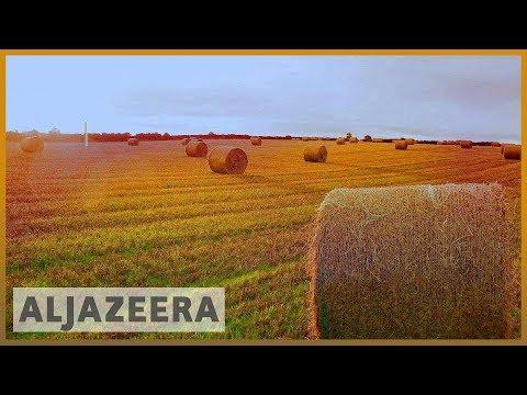 🇺🇸 Farming in the US facing a tough future | Al Jazeera English