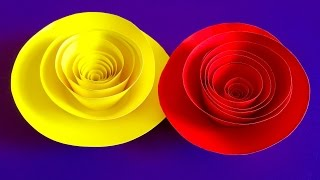 Rolled Paper roses | Quilling paper flowers wall decoration | Valentine's day gift and decor ideas