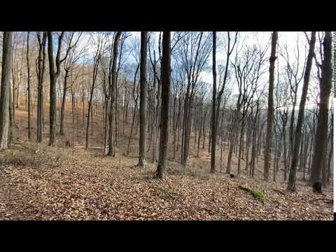 Video Of Mohican, OH