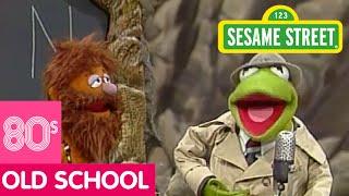 Lời dịch bài hát The First Day Of School - Sesame Street