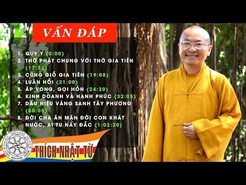Vấn đáp: Quy y, niệm Phật, kinh doanh và hạnh phúc (29/05/2011) Thích Nhật Từ