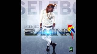 Selebobo   ZaminA  ( Official Audio )