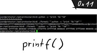 A simple Format String exploit example - bin 0x11