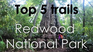 Top 5 Trails Redwood National Park, California ( GoPro HD)