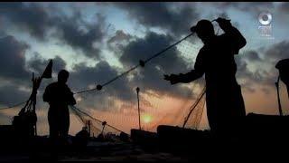 Especiales Noticias - Redes de vida. La pesca en México