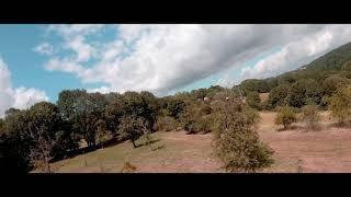 Cinematic fpv drone - dji air unit + gopro hero 7