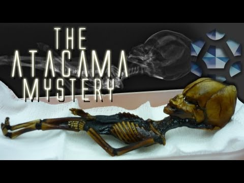 The Atacama Humanoid