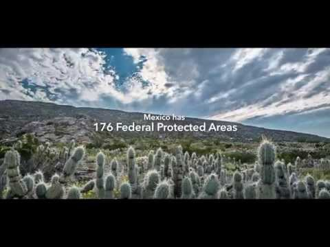 Valuation of Ecosystem Services in Mexican Federal Natural Protected Areas