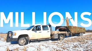 Young farmer makes MILLIONS off of HAY? (I Don't)