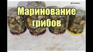 Маринование грибов / Mushroom pickling | Видео Рецепт