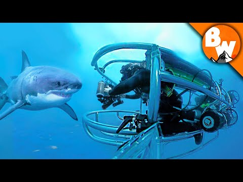 Shark Cage Submarine for Great Whites!