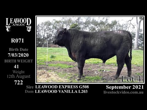 LEAWOOD EXPRESS R071
