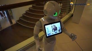 AIDAperla: Pepper - Roboter an Bord