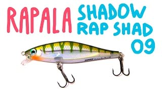 Rapala shadow rap shad deep-sdrsd09