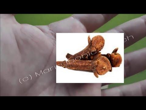 Pikkelyes papilloma patológia