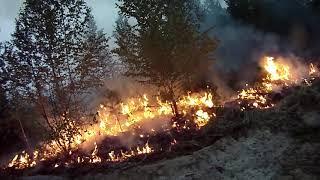 В Первомайском районе введен особый противопожарный режим
