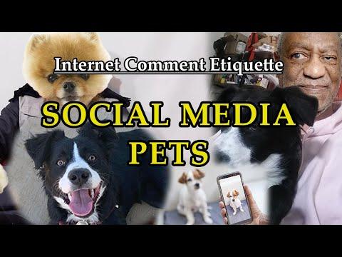 """Internet Comment Etiquette: """"Social Media Pets"""""""