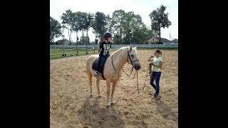 Первый урок верховой езды. Конный спорт.