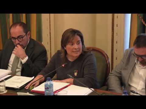 Pleno de la Diputación Provincial (6-02-2020)