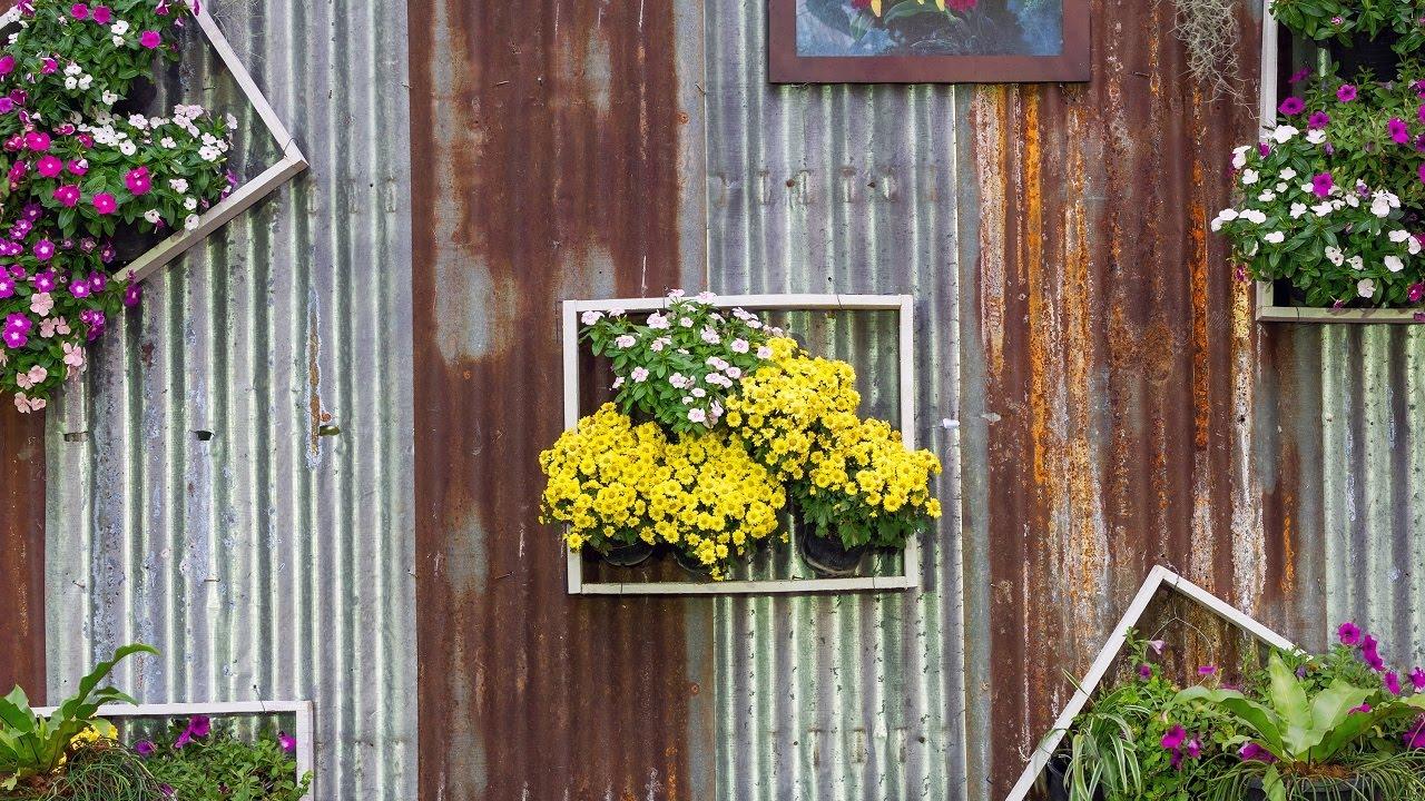 Πρασινίζοντας τους τοίχους μας