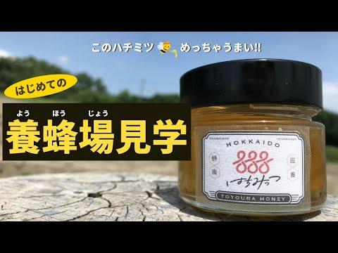, title : '【養蜂場見学】友人の養蜂家に養蜂やハチのことをたくさん質問!!