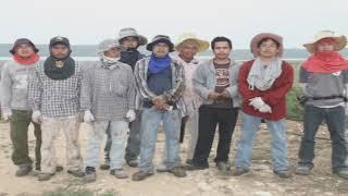 חקלאות 2010(1 סרטונים)