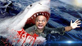 SHARK ATTACK   Raft