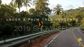 Under A Palm Tree | 2019 Showreel