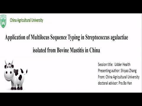 streptococcus agalactiae prostata