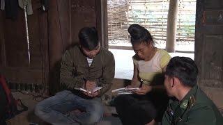 Tin Tức 24h: Rừng phòng hộ bị chặt phá nghiêm trọng ở Quảng Trị