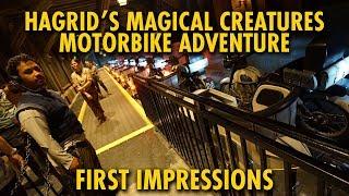 Hagrid's Magical Creatures Motorbike Adventure First Impressions | Universal Orlando
