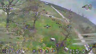 FPV and Trees