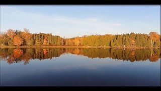 Autumn Leaves on Beaver Lake 5 Minute Mindful Meditation for Inner Peace Tranquility