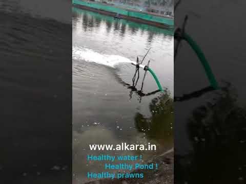 Alka-C9 (AF) Fish Culture Water Softener Equipment