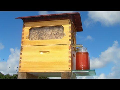 flow hive es un revolucionario invento para sacar miel blog you. Black Bedroom Furniture Sets. Home Design Ideas