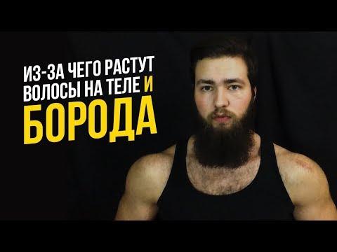 Почему растут борода и волосы на теле у мужчин (Тестостерон, Дигидротестостерон, АР)