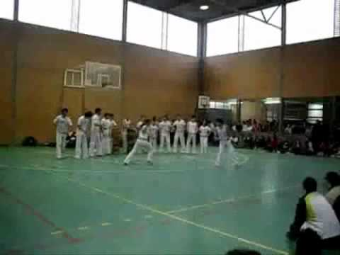 Video Youtube Albero