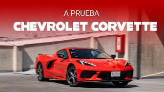 Chevrolet Corvette 2020, a prueba: el ícono americano quiere medirse con los mejores del mundo