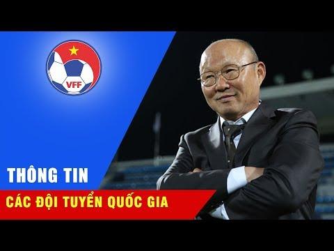 Những chia sẻ đầu tiên về kế hoạch của tân HLV trưởng của ĐT Việt Nam