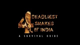 4 Deadliest Snakes of India | A Survival Guide
