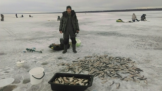 Рыбалка зимняя на ладожском озере