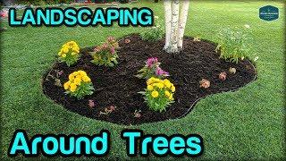 Landscaping / Edging / Mulching Around Trees
