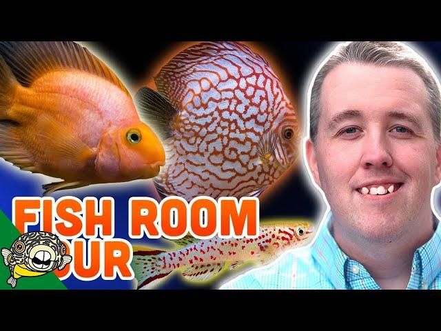 FISH ROOM AQUARIUM TOUR AT SERGEANT TANK PETS