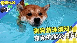 【阿楞Vlog#4 xCanon】狗狗游泳須知!奈奈的游泳日記