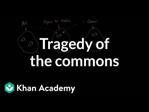 Tragedy Of The Commons Video Khan Academy